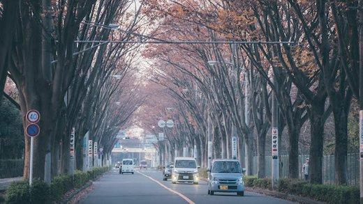 【埼玉県・朝霞市】不用品の回収・粗大ゴミの処分について